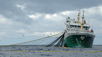 Fiskehåndtering for fiskefartøy