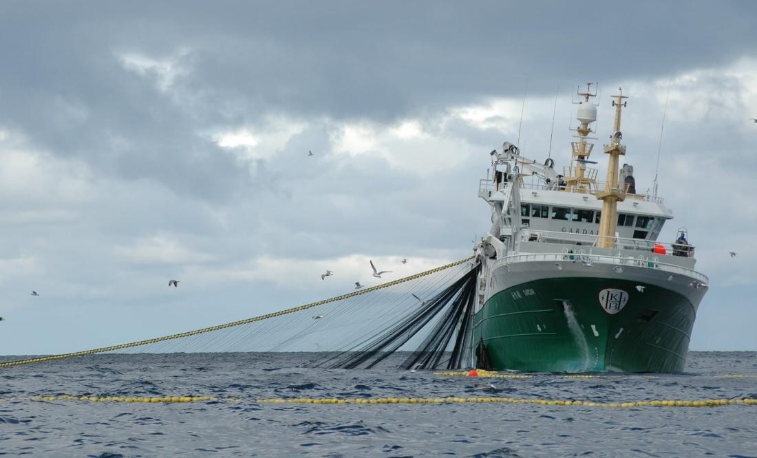 Fiskeri - Systemer og Produkter