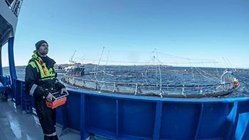 God fiskehåndtering gir god lønnsomhet
